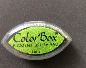 Lime Color Box Pigment Brush Pad