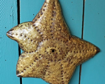 Sea Star Starfish - brass metal sea life sculpture - wall hanging - with burgundy red patina - OOAK