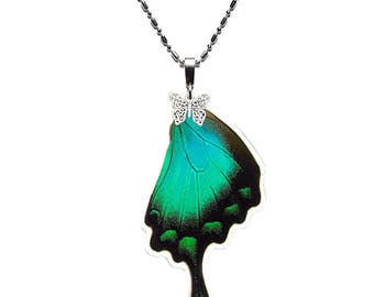 REAL BUTTERFLY WING Necklace (Papilio Lorquinianus Hindwing - N017)