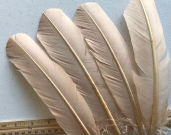 TURKEY QUILL, Beige, Oatmeal , 4 pieces / Q-19