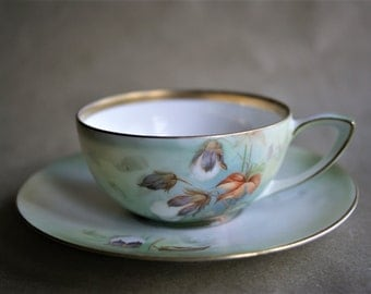 Vintage Cup and Saucer Cotton Plant R S Germany Delicate Porcelain China Collectible Spring Gift For Her Reinhold Schlegelmilch