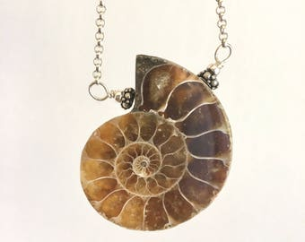 Ammonite Fossil Sterling Silver Necklace