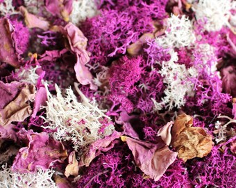 Angel Face Rose petals-Dried Flower confetti-Reindeer moss-Assorted shades pinks purples-1 cup Candle supplies-Soap supplies