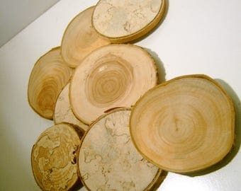 500 Large Assorted  Blank Tree Branch Slices 3-4 inch  Top Drilled