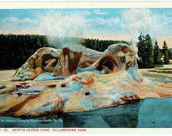 Yellowstone National Park Vintage Postcard - Grotto Geyser (Unused)
