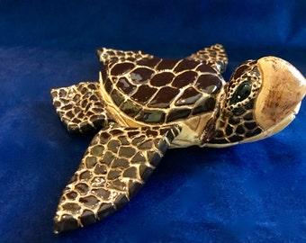 Sea Turtle Kemp's Ridley Tortoise Loggerhead Sea Turtle