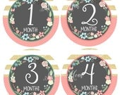 FREE GIFT, Baby Girl Month Stickers, Baby Monthly Stickers, Just Born Bodysuit. Floral Wreath, Photo Prop, Pink, Mint, Gold Nursery Decor