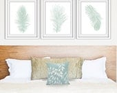Feathers (Series A3) Set of 3 - Art Prints (Featured in Silver Sage on White) Nature Woodland Inspired