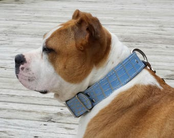 Baby Blue Leather Dog Collar, Blue Alligator Leather Dog Collar With Nickel Hardware (Made In Ca)