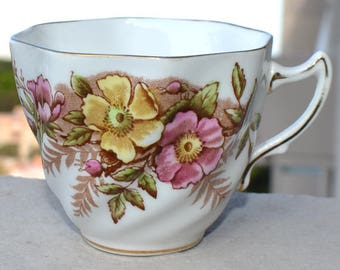 Teacup Rosina Bone China Made in England  #4999