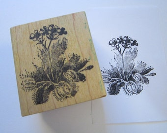 vintage rubber stamp - VENUS FLY TRAP - carnivorous plant with flower