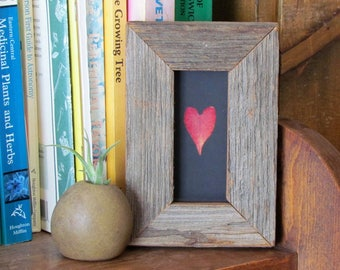 Red Heart Leaf in Handmade Barn Wood and Glass Frame Upcycled Reclaimed Canadian Barn Board One of a Kind Botanical Ecofriendly Gift Idea