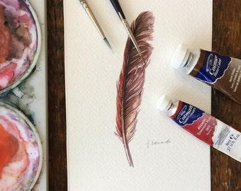 Cardinal Feather study - Original Watercolour feather study