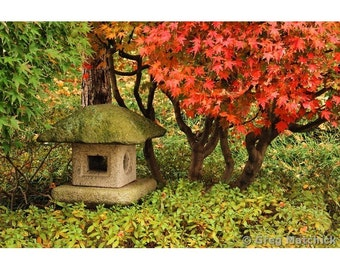 """Fine Art Color Nature Photography of a Japanese Lantern among the Leaves and Fall Foliage in a Japanese Garden - """"Japanese Lantern 1"""""""