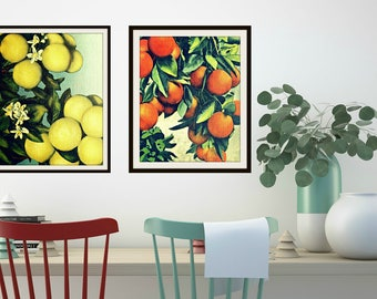 Grapefruit Print, Oranges Print Set, Mid Century Modern Art, Retro Kitchen Print Set, Mid Century Kitchen Art Oranges  Vintage Botanical Art