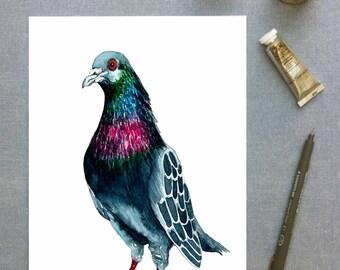 Seymour the Pigeon watercolour print