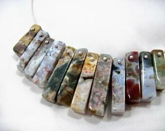 Ocean Jasper Gemstone Silver Choker Necklace
