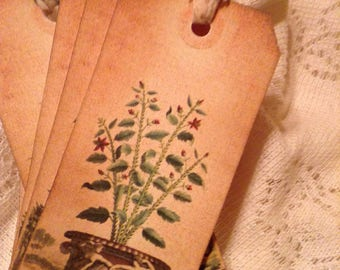 Vintage Botanical Tags No. 2, Botanical Garden Hang Tags, Shabby Floral Tags, Gift Wrap Tags, Packaging, Gift Wrap, Floral Tattered Ribbon