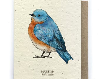 Bluebird Greeting Card - Plantable Seed Paper - Blank Inside