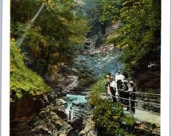 Watkins Glen, New York, Shadow Gorge - Vintage Postcard - Postcard - Unused (SS)