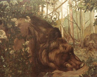 The Jungle Book by Rudyard Kipling illustrated by Maurice and Edward Detmold