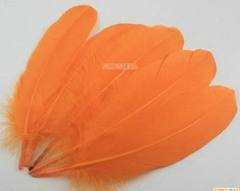 50 Pieces Orange Feather 14-20cm (YM346)