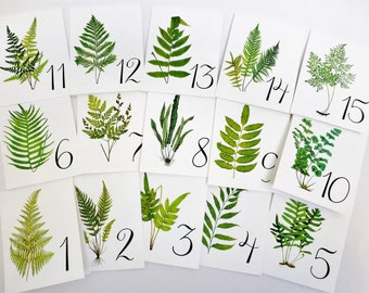 Fern Table Cards, Fern Table Numbers, Woodland Table Numbers  Wedding Table Card, Wedding Botanicals, Fern Weddinge Cards, Garden Table W109