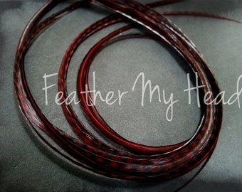 Feather Hair Extension 7-9 inches Long (18-23cm) Thin Fashion Euro - Grizzly Stripe And Solid Mix - 10 Pc Espresso