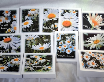 Wild Field of Daisies - Notecards