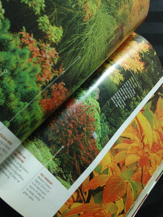 Better Homes And Gardens Volume 87 No 10 October 2009