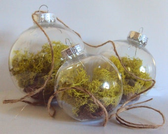 Set of Three Woodland Moss Ornaments - Terrarium Baubles - Whimsical Hanging Fairy Orbs - Christmas Ball Decoration - Rustic Nature Decor