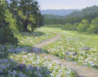Daisy Meadow 2 - Original wildflower field painting