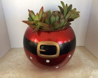 Medium Succulent Arrangement in a Ceramic Santa Ball Planter. Beautiful, completely assembled dish garden.
