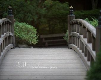 Digital Background of Bridge in Japanese Gardens