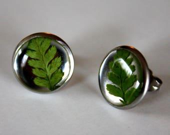 Fern stud earrings, fern earrings, nature earrings, green earrings, botanical earrings, resin and fern earrings, made in Canada