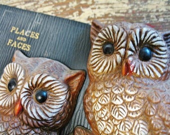 Vintage 1970s Pair Molded Owls Small Wall Art