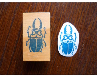 Rubber stamp beetle