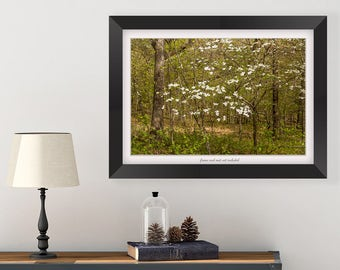 Dogwood Tree Wall Art - Spring Art - Nature Photography Print - Landscape Print - Forest Art - Landscape Photo - Master Bedroom Wall Decor