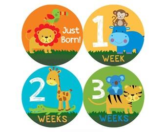 Safari Monthly Baby Milestone Stickers - Baby Shower Gift - One-Piece Baby Stickers - Monthly Baby Stickers - Baby Month Sticker
