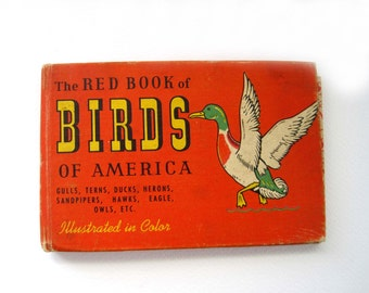 Birds of America Small Book, The Red Book of Birds, Illustrated in Color, 1950s Bird Identification Booklet