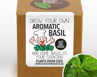 Grow Your Own Basil Plant Kit