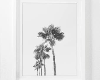 California Photography, California Art, Palm Tree Wall Art, Wall Decor, Palm Tree Photography, Black and White Instant Download Wall Art