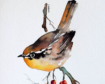 ORIGINAL Watercolor Painting, Wren, American State Bird, Bird Illustration 6x8 Inch