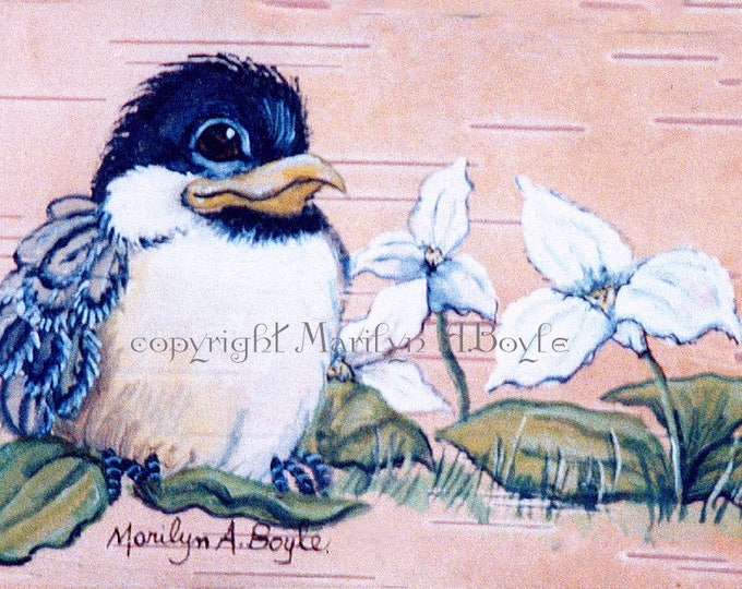 LIMITED EDITION ACEO Print;free shipping, collector's item, 2.50 x 3.50 inches, baby chickadee, trillium,feathers, wings, run of only 20