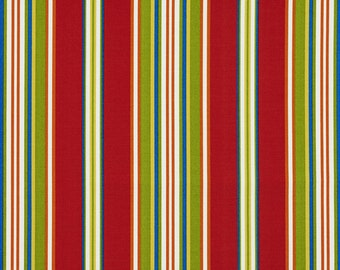 Rainbow Colored Various Size Stripes Indoor Outdoor Upholstery Fabric By The Yard | Pattern # A281