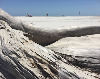 Beach Driftwood.Beach Photography.Driftwood Photography.Summer Time.Digital Download.Printable