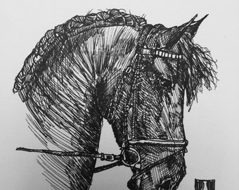 KillerBeeMoto: Original Pen Sketch of Fresian Horse