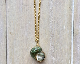 Gold colored chain necklace with gold-teal sea snail conch shell pendant