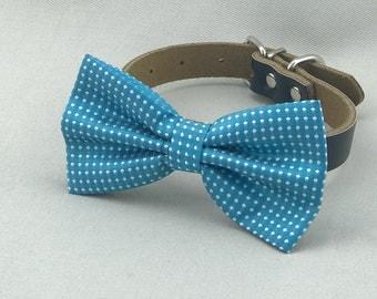 Ocean Blue Dots Bowtie for Wedding Dog Outfit Pet Wedding Aqua Blue Bow Tie Black Dog Collar