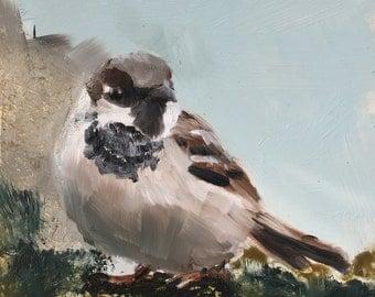 Sparrow, original oil painting on panel 15x15cm